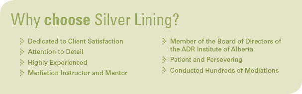 Why Choose Silver Lining?